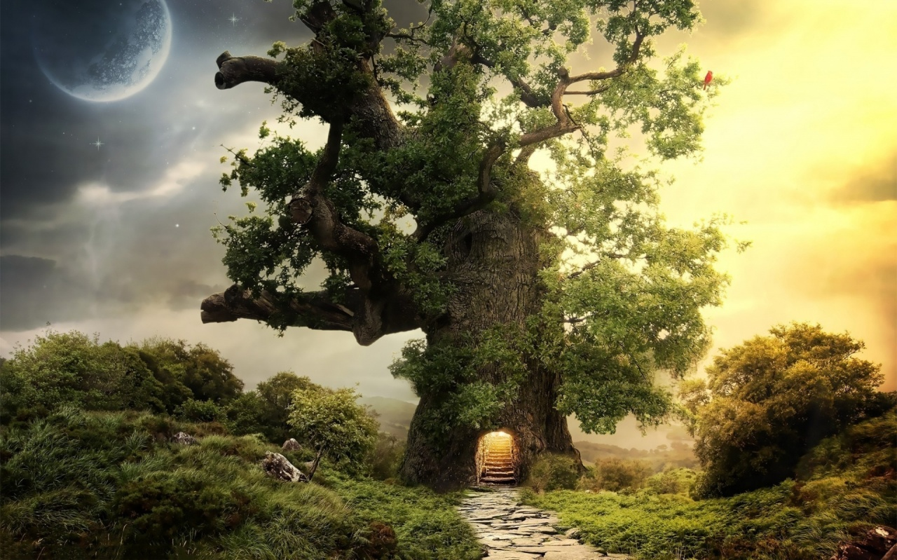 Home Mirreil Casa fantasy-house-tree-1280x800