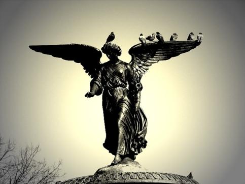 Angelo di Central Park, NY